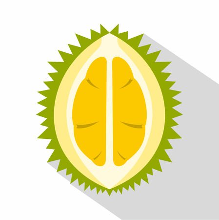Durian icon. Flat illustration of durian vector icon for web isolated on white background
