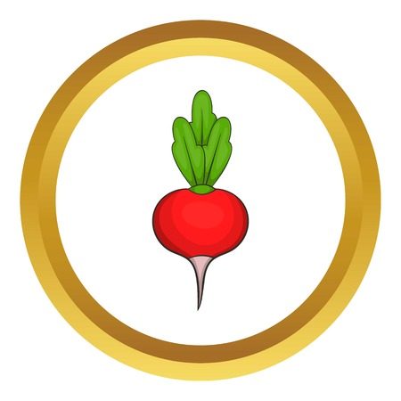 Radish vector icon in golden circle, cartoon style isolated on white background