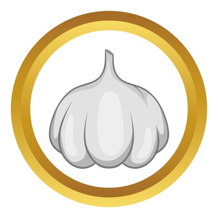 Garlic bulb vector icon in golden circle, cartoon style isolated on white background Illustration