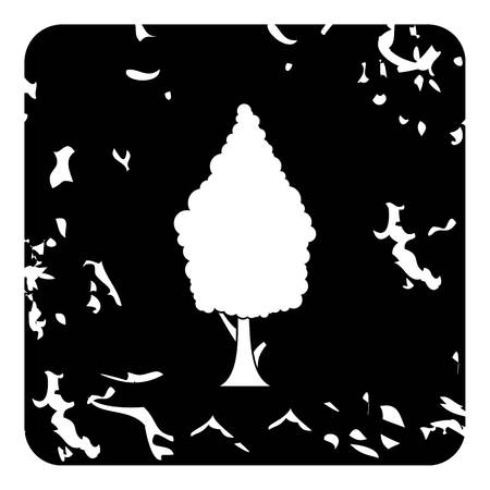 cypress tree: Cypress tree icon. Grunge illustration of cypress tree vector icon for web design