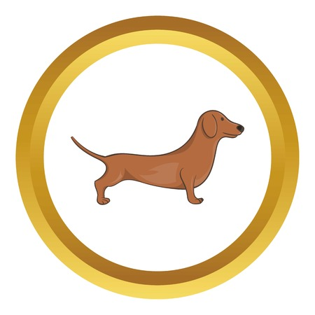 weiner: Brown dachshund dog vector icon in golden circle, cartoon style isolated on white background