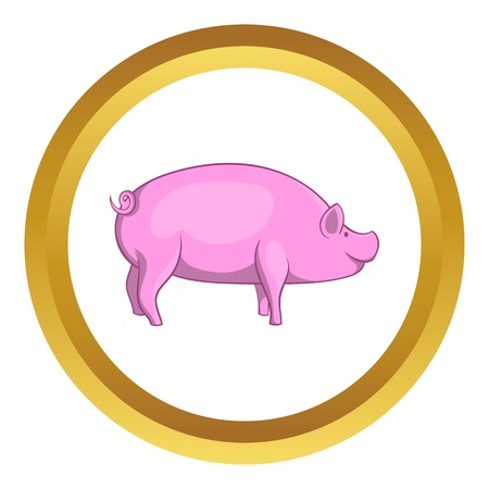 Pig vector icon in golden circle, cartoon style isolated on white background