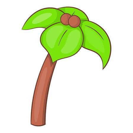 srilanka: Palm icon. Cartoon illustration of palm vector icon for web