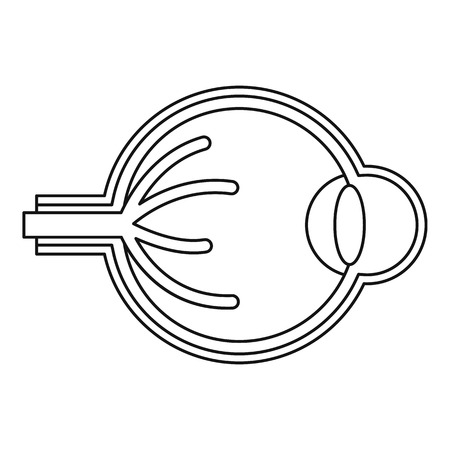 sclera: Eyeball icon. Outline illustration of eyeball vector icon for web