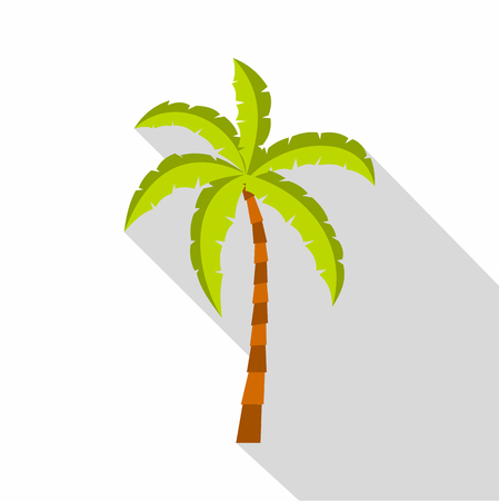 Palm tree icon. Flat illustration of palm tree vector icon for web