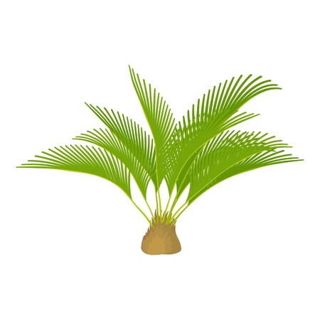 Small palm tree icon. Cartoon illustration of small palm tree vector icon for web