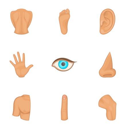 Human anatomy icons set, cartoon style