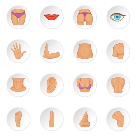Body parts icons set Illustration