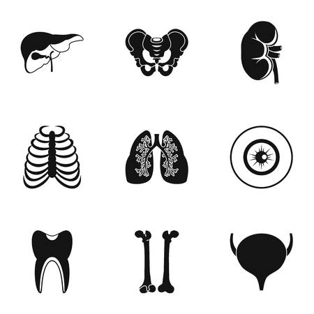 synthesis: Bodies icons set, simple style