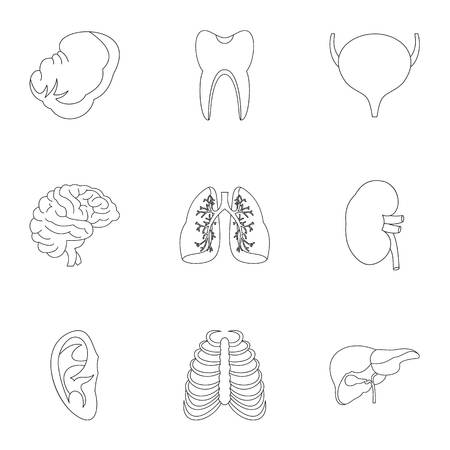 bile: Structure of body icons set, outline style