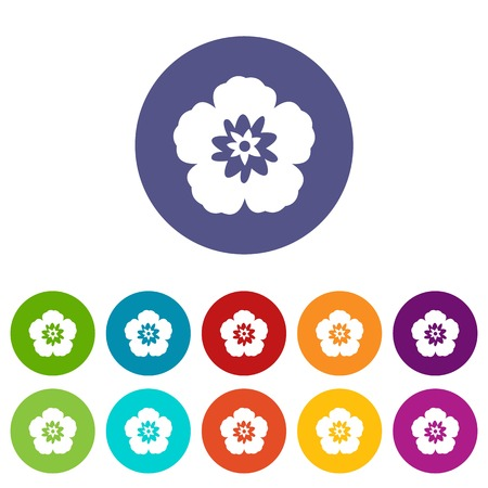 Rose of Sharon, korean flower set icons Illustration