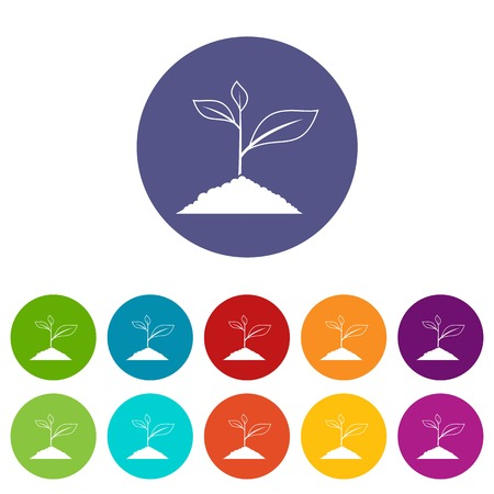 Growing plant set icons in different colors isolated on white background