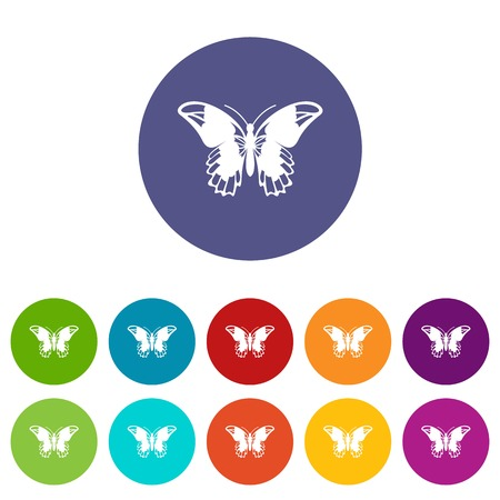 Admiral butterfly set icons in different colors isolated on white background Illustration