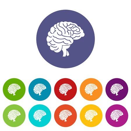 neurosurgery: Brain set icons
