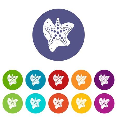 Sea star set icons Illustration