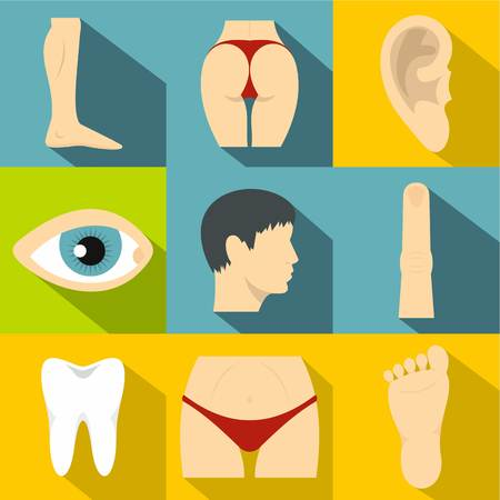 buttocks: Human body icons set. Flat illustration of 9 human body vector icons for web