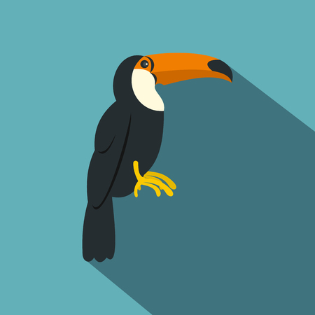 fowls: Toucan, ramphastos vitellinus icon. Flat illustration of toucan, ramphastos vitellinus vector icon for web on baby blue background Illustration