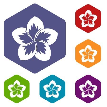 Frangipani flower icons set Illustration