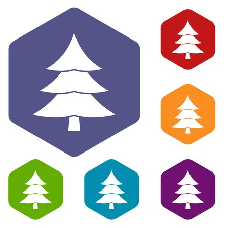 conifer: Fir tree icons set rhombus in different colors isolated on white background