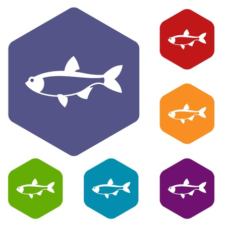 common carp: Rudd fish icons set