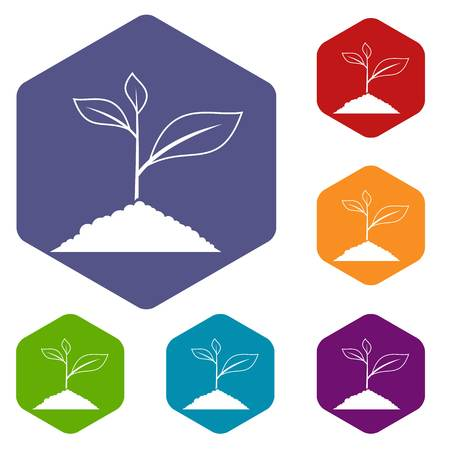 Growing plant icons set rhombus in different colors isolated on white background