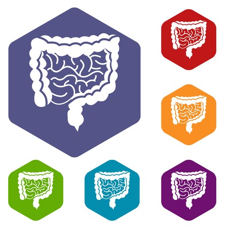alimentary tract: Intestines icons set