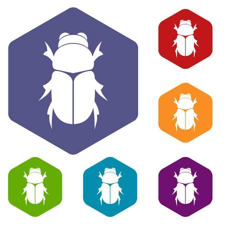 entomology: Chafer beetle icons set