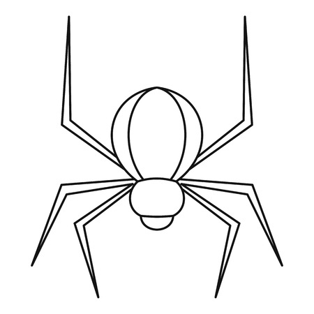 latrodectus: Spider insect icon, outline style