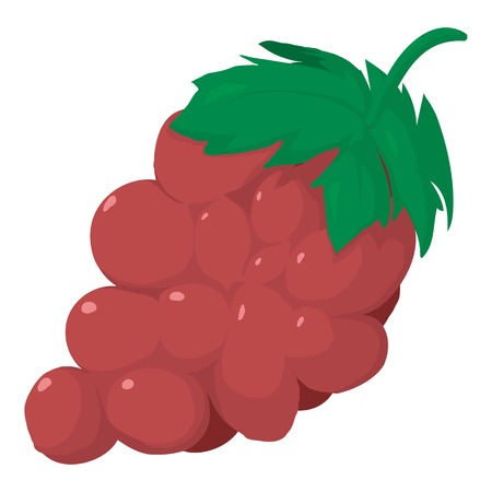 isabella: Grape icon, cartoon style Illustration