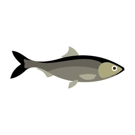 Fish icon, flat style Illustration