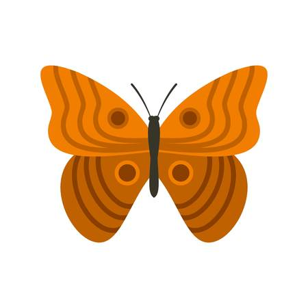 Butterfly with ornament icon, flat style