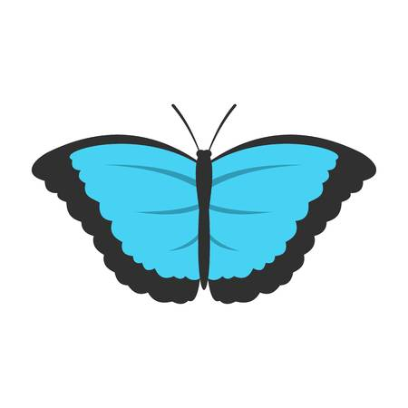 Butterfly with big wings icon, flat style Illustration