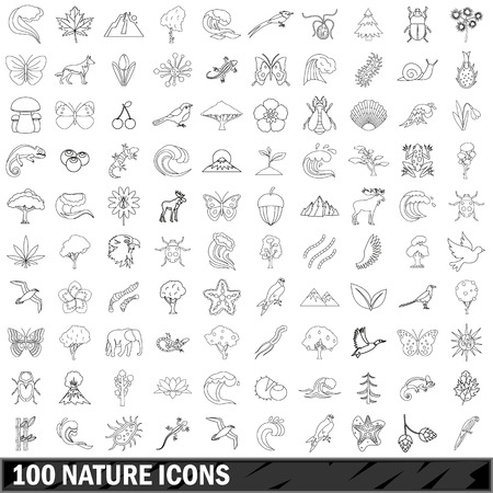 water chestnut: 100 nature  icons set, outline style