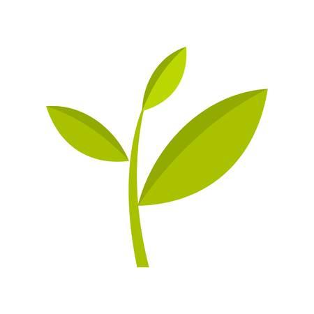 Tea plant icon, flat style