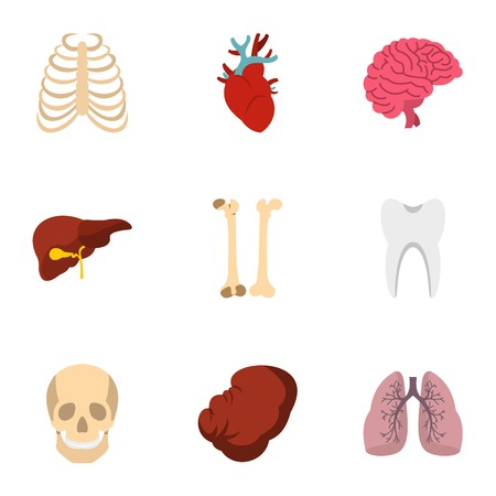 Human organs anatomy icons set, flat style