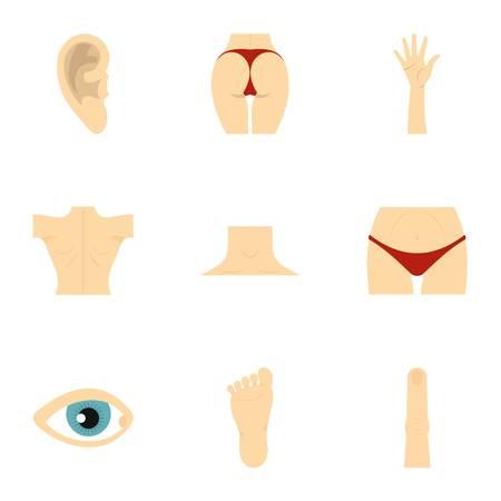 abdomen women: Human body parts icons set, flat style