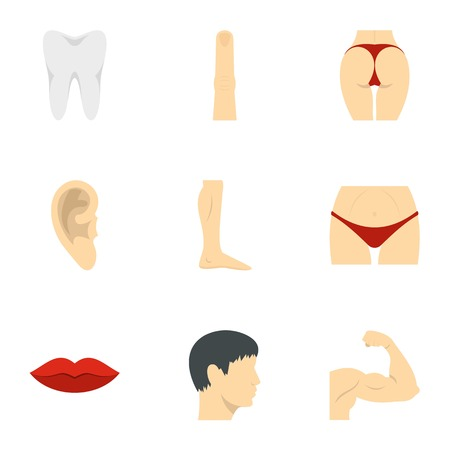 Outer parts of body icons set, flat style Illustration