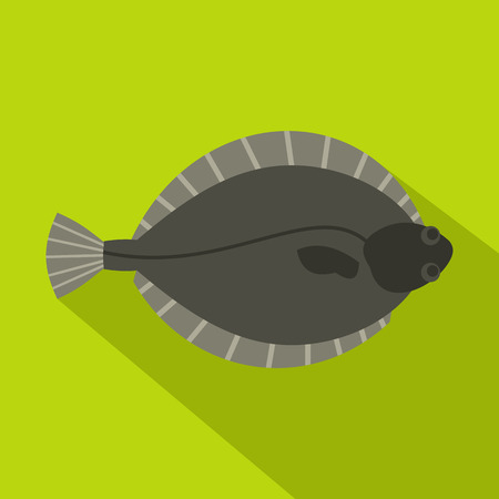 plaice: Flounder fish icon, flat style
