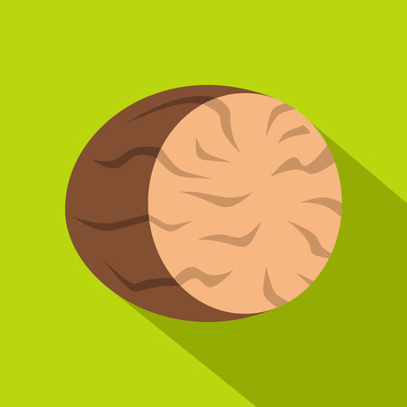 Brown half of nutmeg icon, flat style Illustration