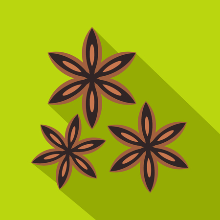 licorice sticks: Star anise spice icon, flat style
