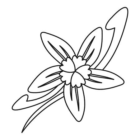 Vanilla flower icon, outline style Illustration