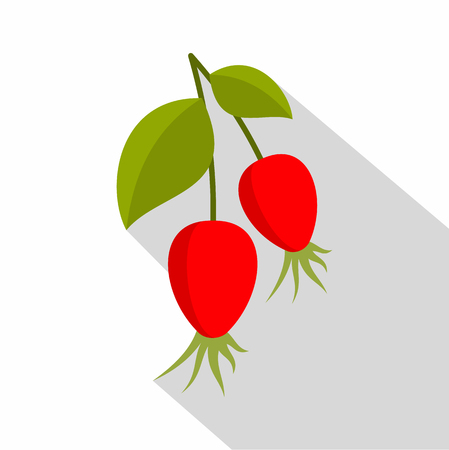 Ripe berries of a dogrose icon, flat style
