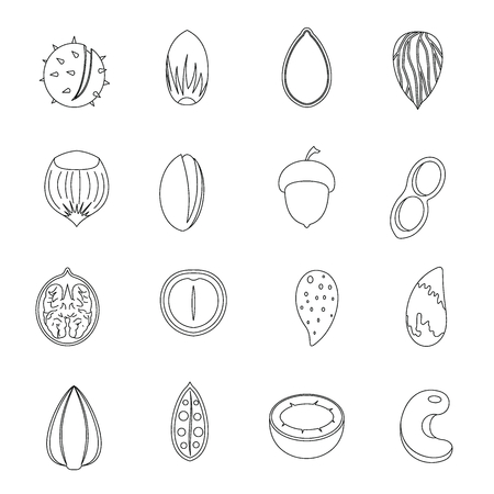 brazil nut: Nuts icons set. Outline illustration of 16 nuts vector icons for web Illustration