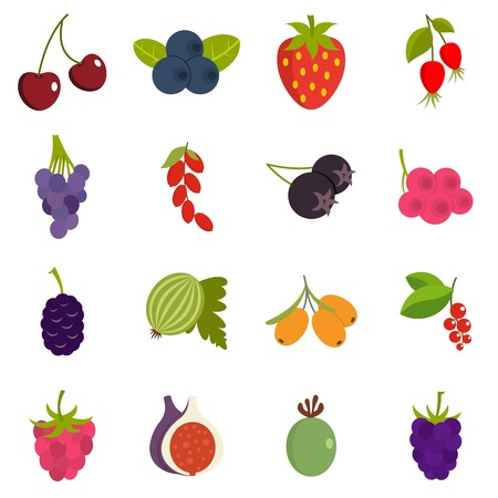 Berries icons set in flat style Ilustracja