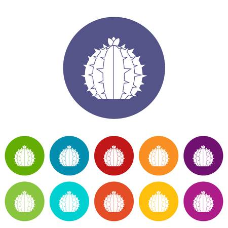 Mammillaria bocasana icons set flat vector