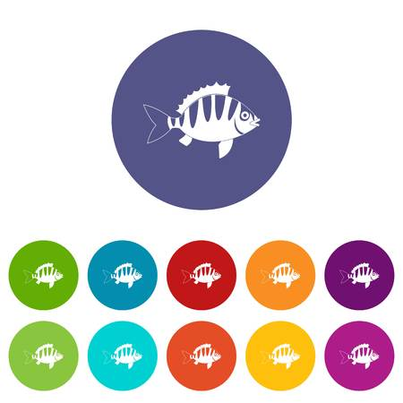 coldblooded: Perch icons set flat vector Illustration