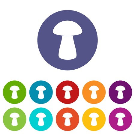 Birch mushroom icons set flat vector Illustration