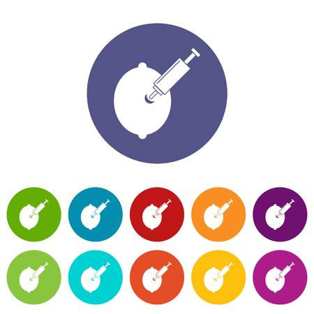 epidemy: GMO lemon with syringe icons set flat vector Illustration