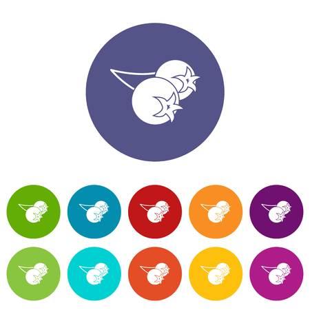 chokeberry: Chokeberry or aronia berry icons set flat vector
