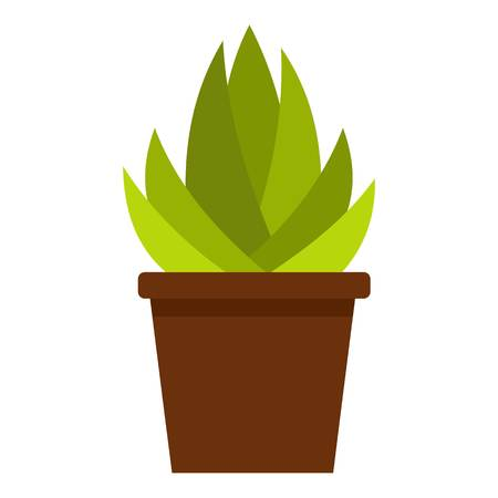 Succulent in flower pot icon isolated